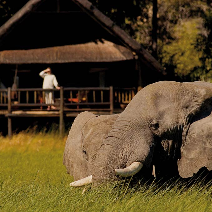 View Belmond Khwai River Lodge in Moremi Game Reserve