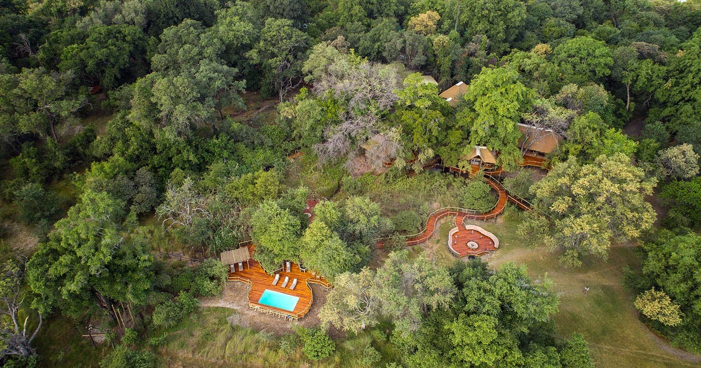 Stay at Camp Moremi in the Moremi Game Reserve for the Ultimate Safari Experience