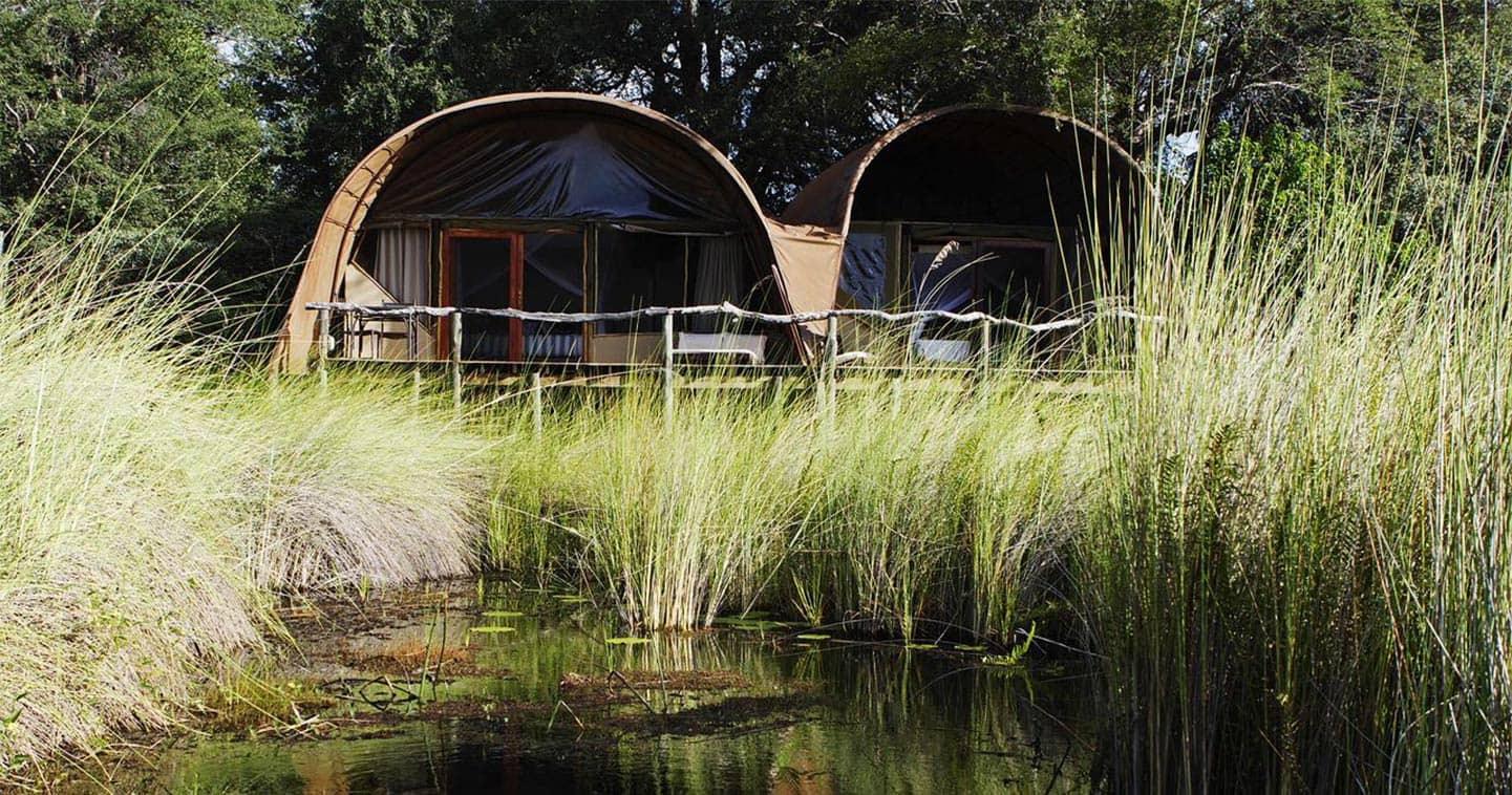 Stay at Camp Okuti in the Moremi Game Reserve for the Ultimate Safari Experience