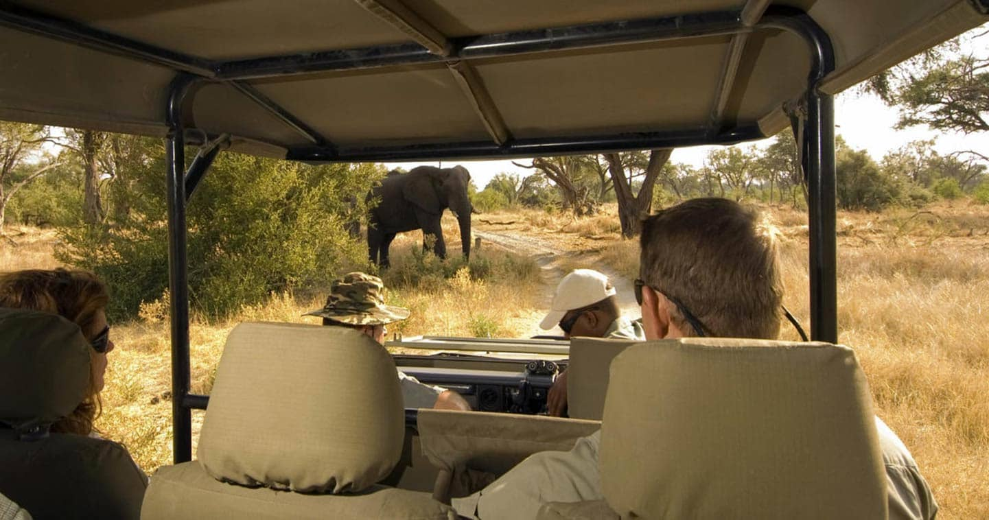 Game Drive in The Chobe National Park